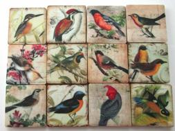 Ceramic Mosaic Tiles - 12 Piece Mixed Set - Vintage Bird Art